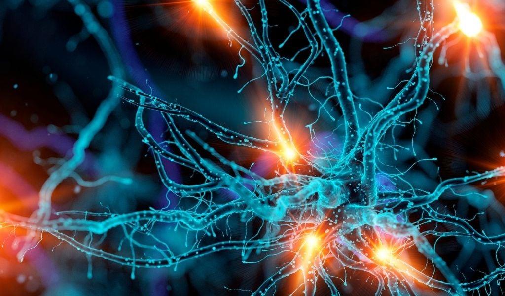 Neurology Insights Blog